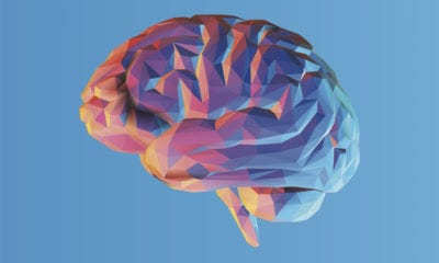 Multicolored brain graphic against a blue background