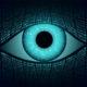 AI privacy concerns